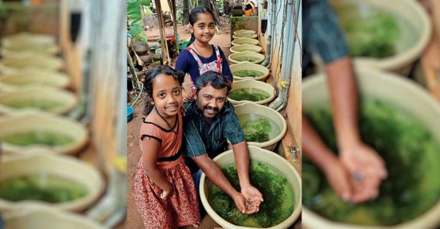 Carpenter affected by COVID crisis swims to good fortune with ornamental fish