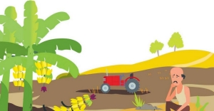 Shift in centre's agro policies to affect small and marginal farmers