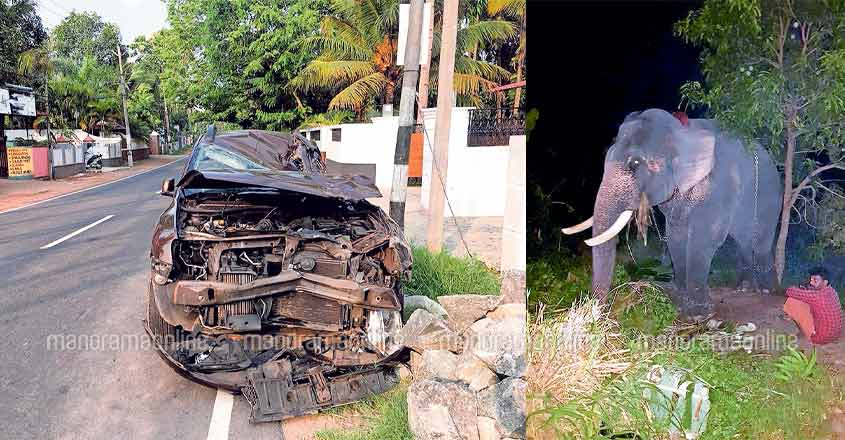 Elephant sits atop car that rammed into it