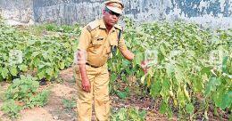 Mavelikkara jail superintendent wins President's award for farming initiative