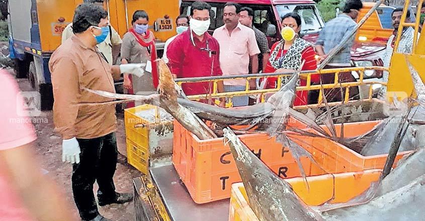 Officials seize, destroy 550 kg stale fish