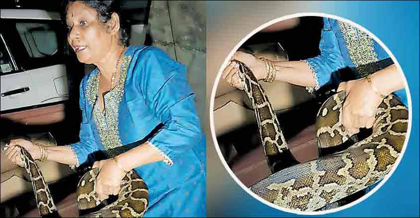 Kochi now has a venomous tag – Kerala's Snake City!