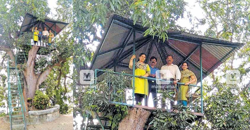 ernakulam-tree-house