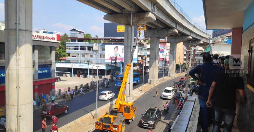 Cat stranded atop Kochi Metro pillar rescued after 6 days