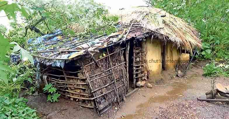 Thirunelly records its first tribal COVID positive case, official declaration soon