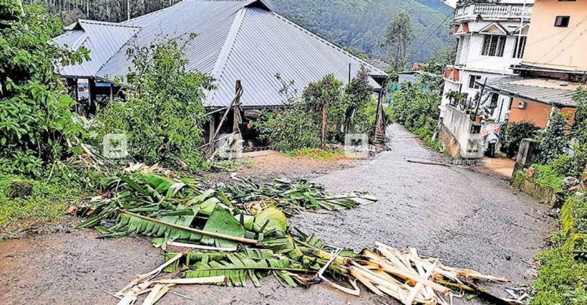 Wild tusker turns up at MLA's house in Idukki, feasts on banana plants