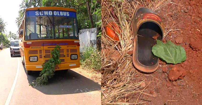 Boy falls off bus, dies after satchel gets entangled in door