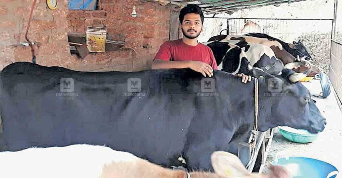 20-year-old takes to dairy farming after college, earns over Rs 50,000 a month