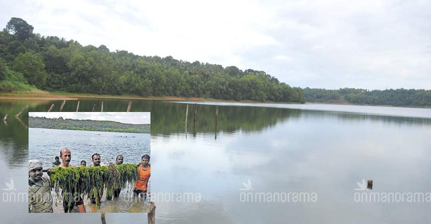People power to the fore for Sasthamkotta lake r