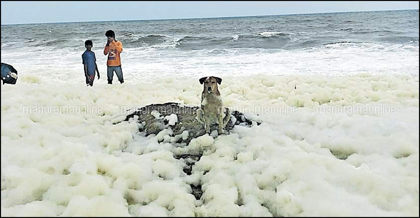 Froth on beaches in Kollam district puzzles people