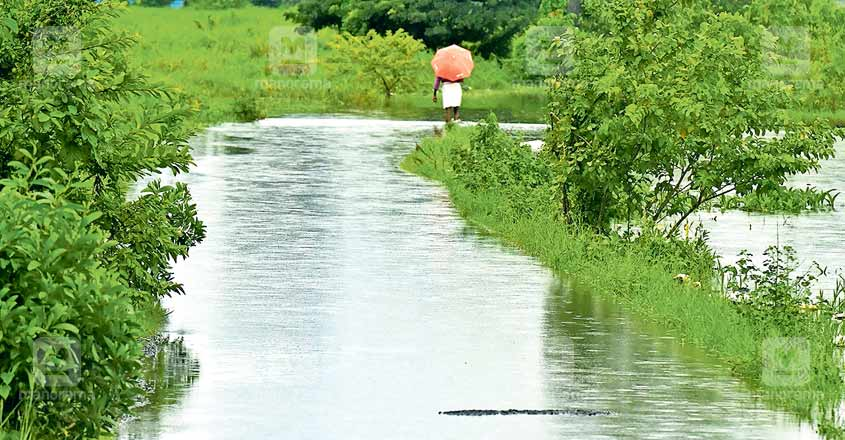 Low-lying areas of Kottayam town inundated