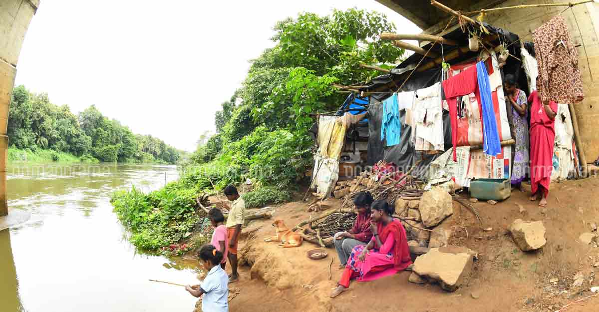 Two families of 16 people live in shed beneath a bridge in Kottayam