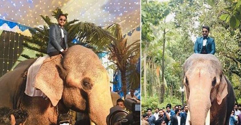 Case against groom for jumbo ride