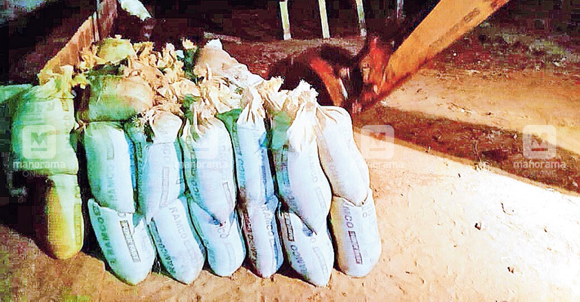 Illegal sand mining rampant in Bharathapuzha even during lockdown