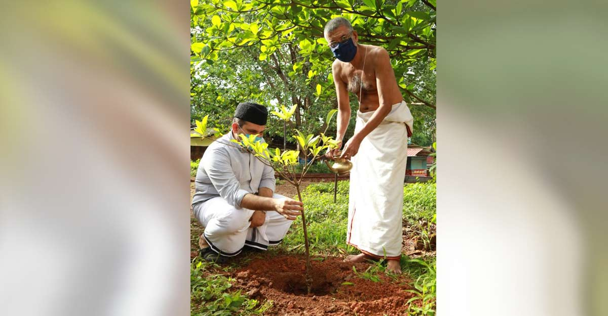 Amid hate campaign over jumbo death, Kerala's Malappuram plants a tree of amity