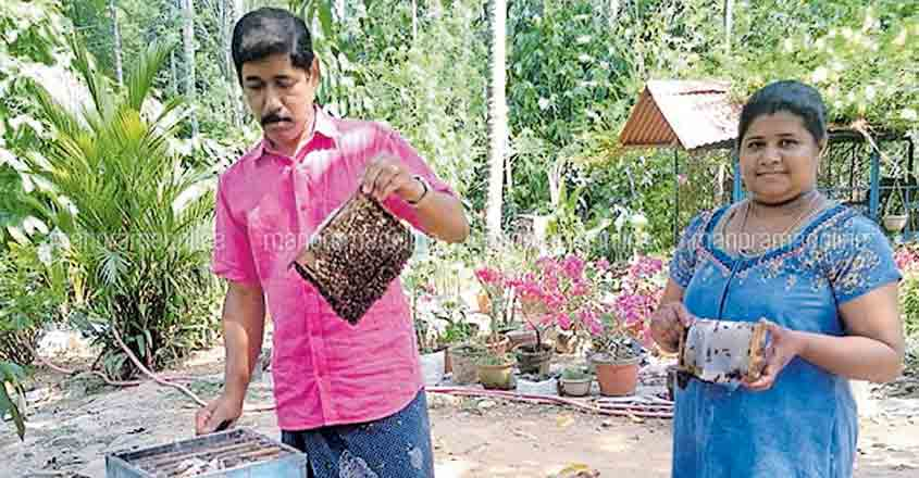 Why this village is dubbed the honeypot of Kerala