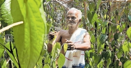 When cancer bowed before the grit of this 73-year-old farmer