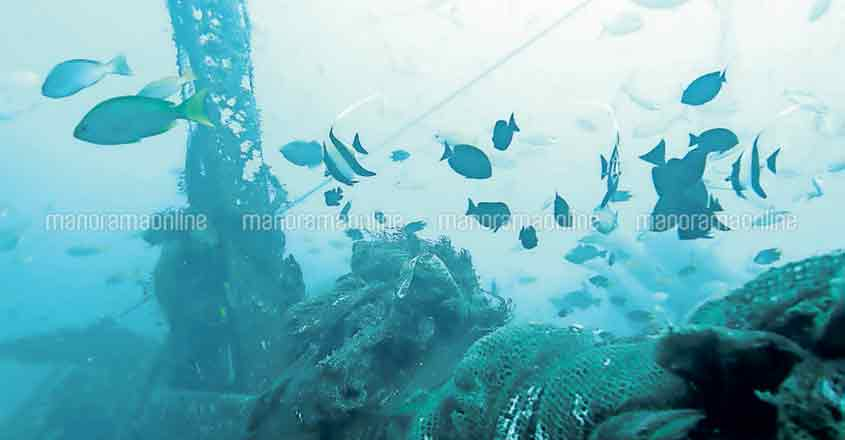 trivandrum-scuba-diving