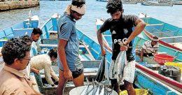 Vizhinjam fishermen nets 10,000kg seer fish