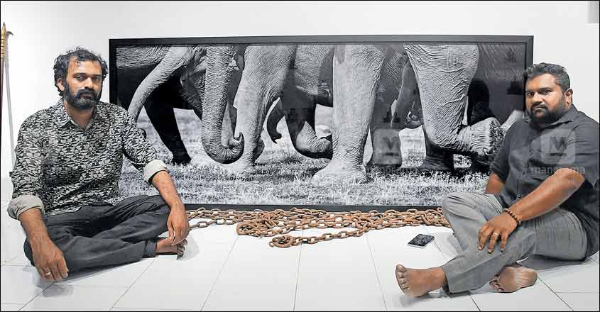 A dark canvas on the lives of elephants in Thrissur