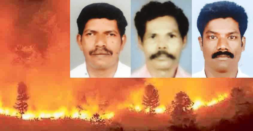3 forest watchers killed while battling wildfire in Thrissur