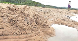 Sand piles up on paddy fields in Wayanad as floodwater recedes