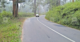 Motorists on Wayanad roads wary of wild animals, accident risk