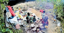 Two homeless tribal families brave the wild in Wayanad