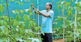 Free hours aplenty, Mananthavady MLA Kelu takes up mixed farming