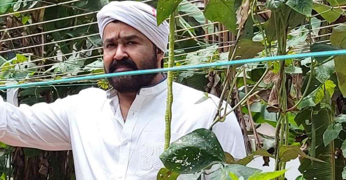 mohanlal-farming