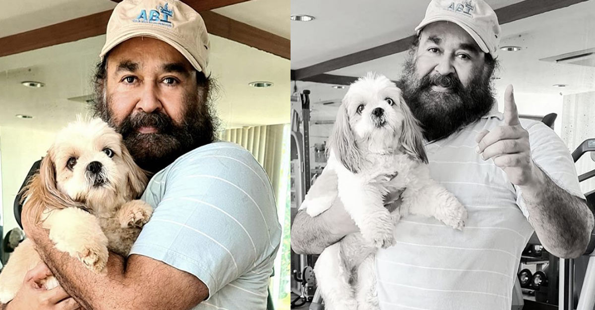 mohanlal-pet-dog