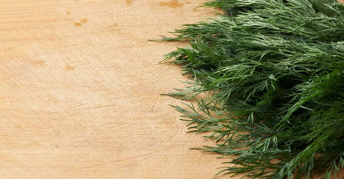 dill-leaves