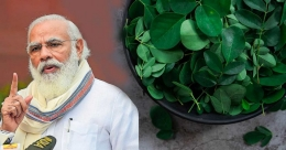 Try these moringa parathas that PM Modi loves