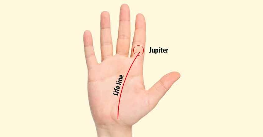 life-line-palm