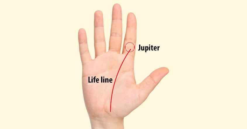 lifeline-palm