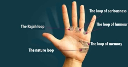 Loops on the palm can reveal your real personality