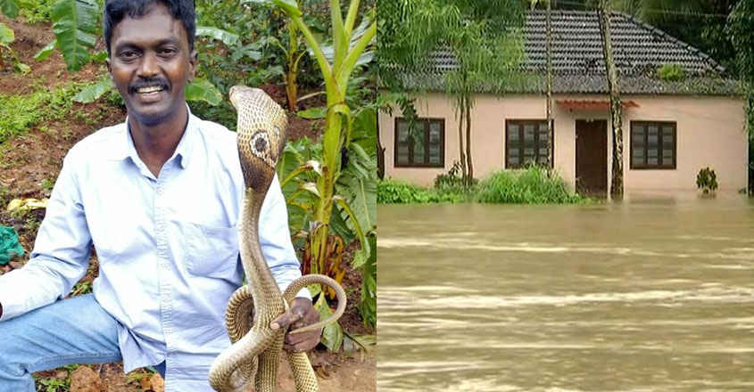 Steering clear of reptiles in inundated homes: Vava Suresh offers tips