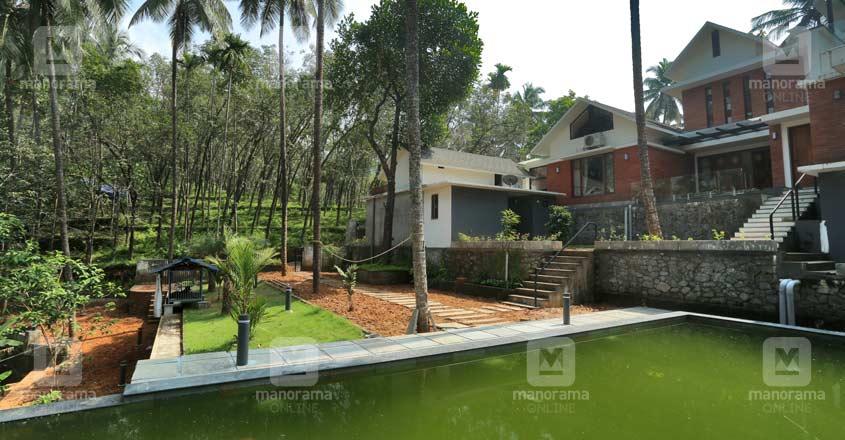 eco-house-calicut-backyard