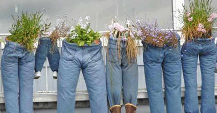 jeans-gardens