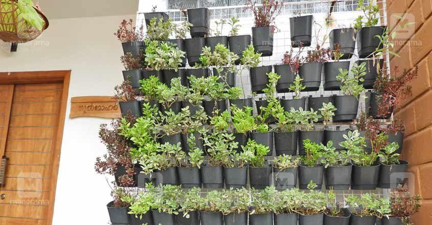 gulmohar-garden.jpg.image.845.440