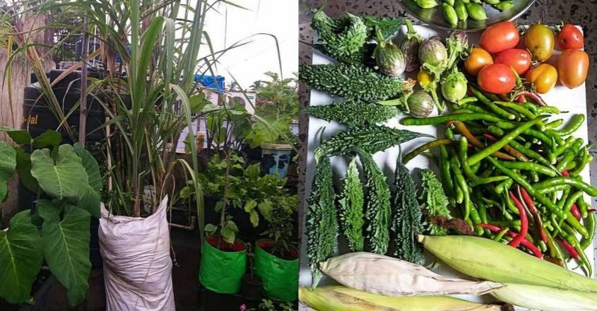 Following organic method, this lady grows vegetable garden