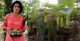 Pune woman reaps success through soil-less terrace farming