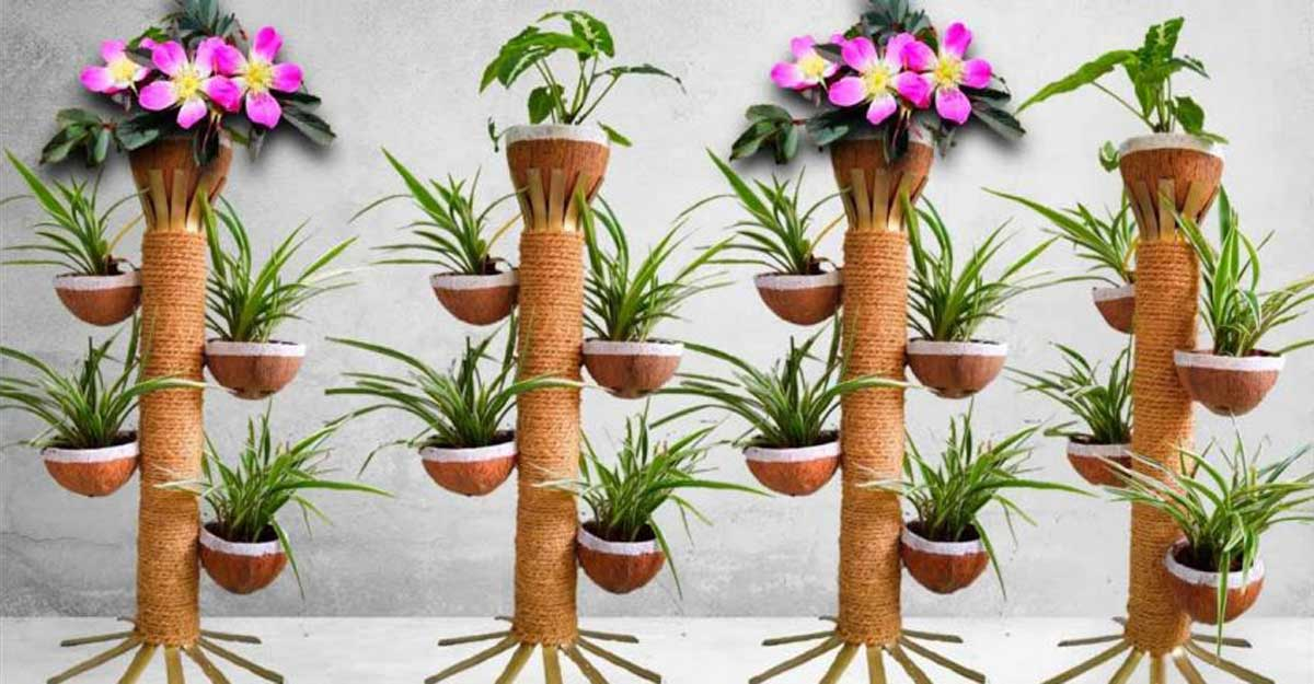 Try this easy spiral planter using coconut shells and bamboo