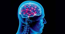 Neurological conditions caused by Covid-19 higher than expected: Study