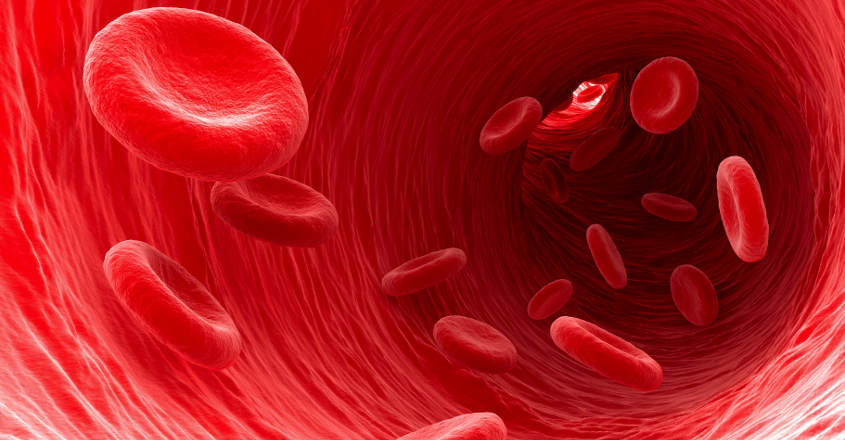 Now swimming robots to deliver drugs in blood vessels