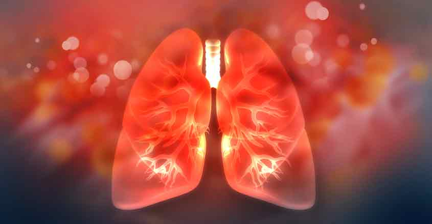 lung-rep-image