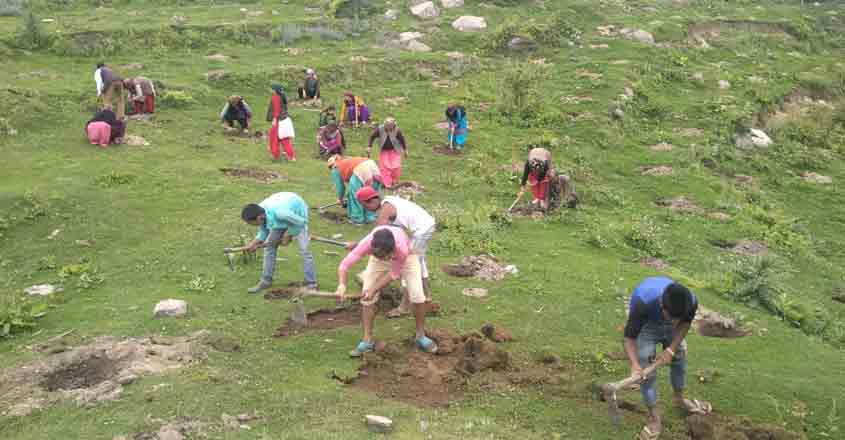 Shimla: People participate in a plantation drive launched by Himachal Pradesh's Forest department, in Shimla on July 24, 2019. The five-day long comprehensive plantation drive concluded today. 25,35,441 plants were planted with the active participation of 1,15,105 people, students, Youth Clubs, Mahila Mandals, NGOs and different agencies in this campaign that was organised in all the twelve districts of the state in 727 sites. (Photo: IANS)