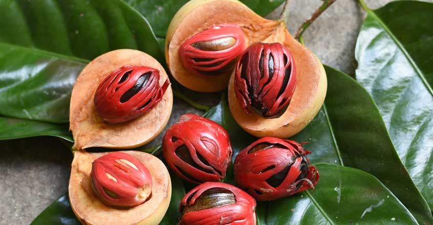 Know these excellent health benefits of nutmeg