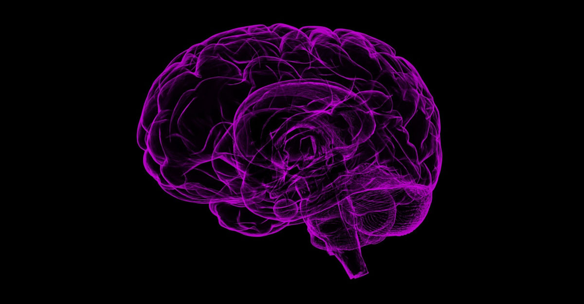 To mark others' location human brains generate common code: Study