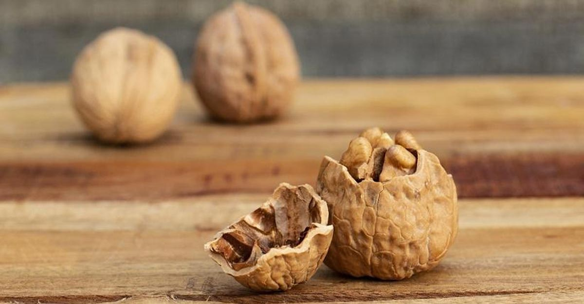 Get power-packed with walnuts.